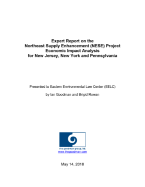 Expert Report on the Northeast Supply Enhancement (NESE) Project Economic Impact Analysis for New Jersey, New York and Pennsylvania.